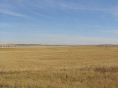 Kindersley prairie