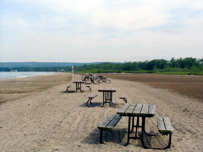 Picnic tables waiting for the weekend hordes